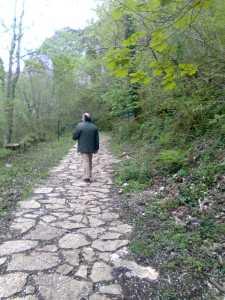 camino (2)