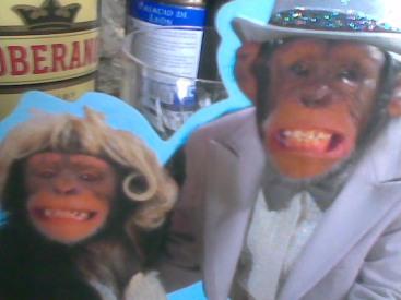 monos emparejados